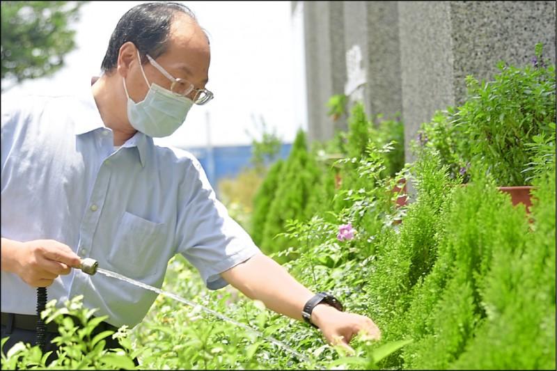 大林慈濟醫院中醫部主任葉家舟說,防疫期間修剪花草、栽植盆栽,有助紓解鬱悶。(大林慈濟醫院提供)
