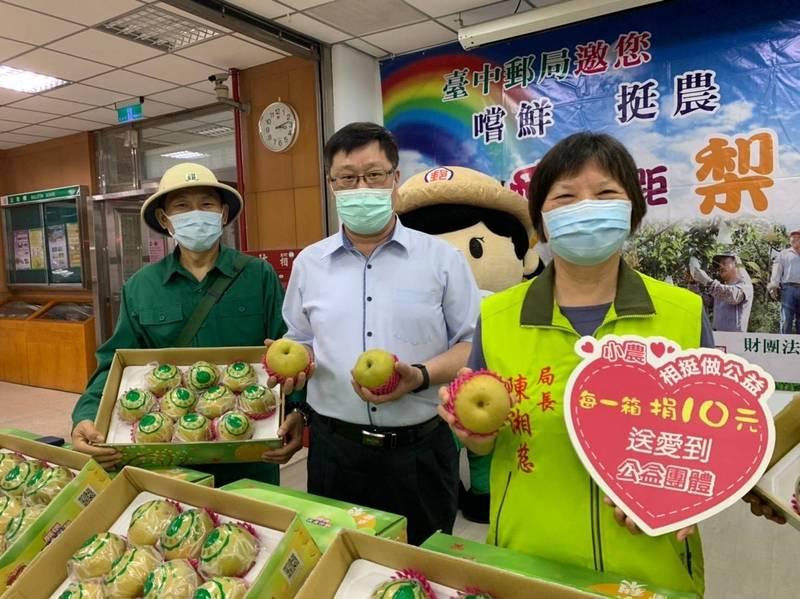 台中郵局「愛無距梨」第8年!新興梨開賣 挺梨農助棄嬰