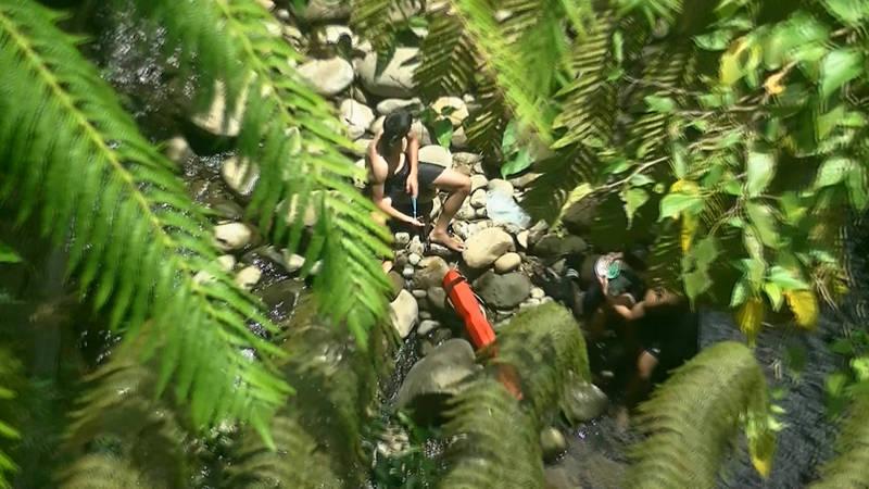 武漢肺炎持續延燒,現正值暑假期間,日前有2名男大生跑到禁止戲水的石碇區秘境「蚯蚓坑」峽谷,且未戴口罩,經民眾通報,被警消人員分別開罰至少一萬元。(記者闕敬倫翻攝)