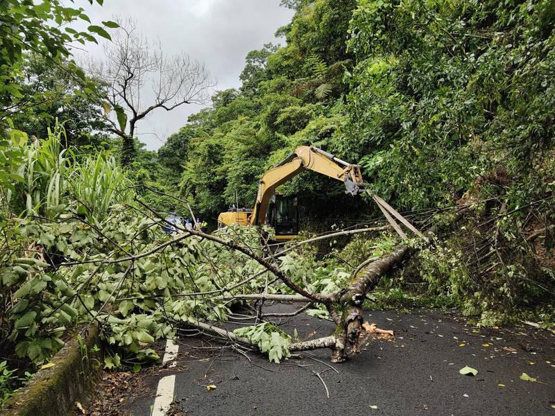 宜蘭山區下起大雨,溪水暴漲、路樹倒塌,警方派員前往處理。(記者蔡昀容翻攝)