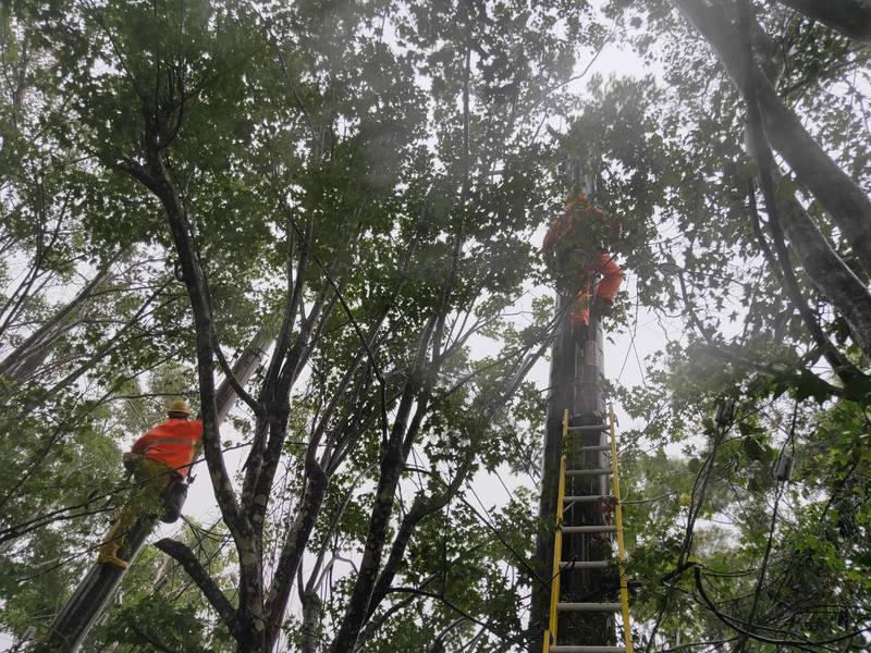 桃園復興區904戶停電,台電公司派員搶修中。(台電公司提供)