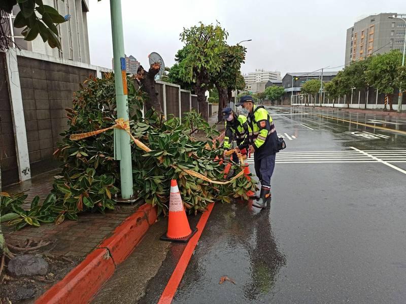 龜山區文明路一棵路樹倒落道路,警方趕忙封鎖部分車道。(警方提供)