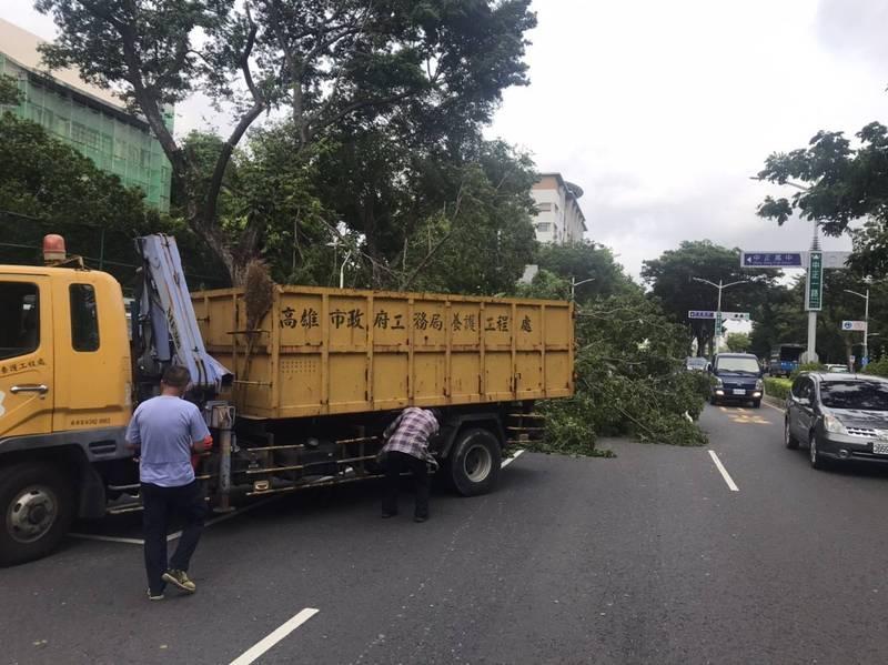 養工處人員到場將百公斤的大型路樹運至清潔車上載運離開。(圖由警方提供)