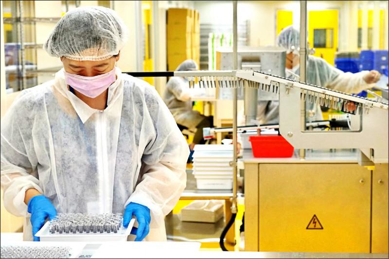 高端武肺疫苗納入公費疫苗接種計畫,食藥署估計,每次收貨檢驗需時一個月。(法新社資料照)