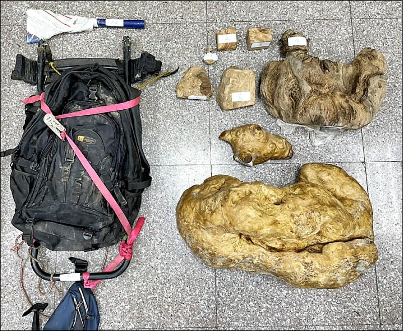 逃逸移工遭部落楊男持獵槍擊中身亡,身上還背著扁柏、檜 木樹瘤計41.2公斤。 (仁愛分局提供)