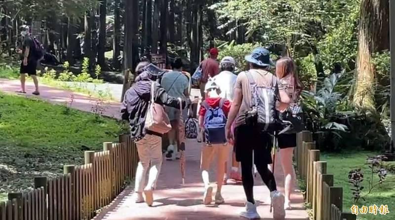 今天防疫由3級降為2級警戒首日,溪頭自然教育園區吸引許多民眾入園遊玩。(記者謝介裕攝)