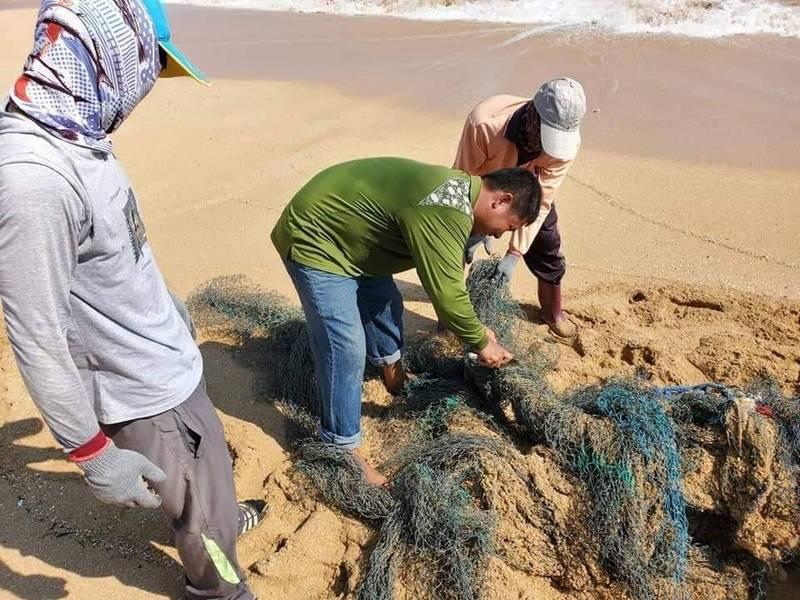 望安鄉公所執行向海致敬淨灘工作,為綠蠵龜清除沙灘棄網,讓母龜順利登岸產卵。(望安鄉公所提供)