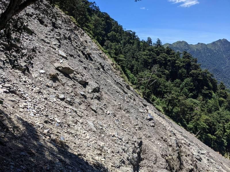 今年6月梅雨期間,能高越嶺道至少有3處路段崩塌中斷,又以10.1K大型崩塌最嚴重,路徑、路基已完全消失,目前尚未完成整修開放。(林務局南投林管處提供)