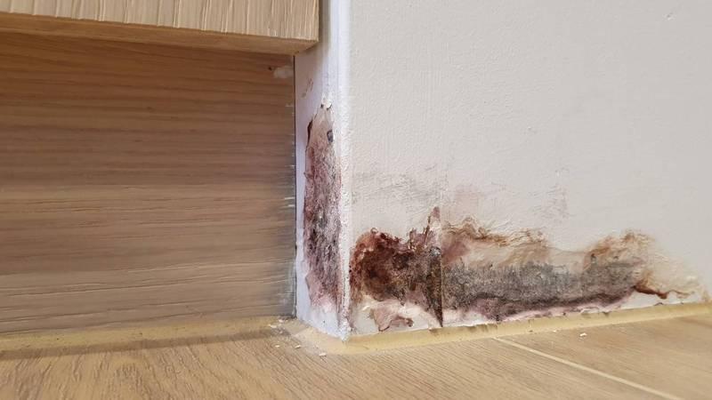 原PO指出,他購入的房子才交屋2個月,但牆面卻嚴重滲水,請了工地主任會勘,對方僅要求他將木地板拆除,但費用需自行負擔,讓他相當苦惱。(圖翻攝自爆料公社公開版)