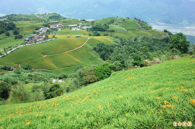 目前六十石山金針花海尚未全開,估計8月中旬後才會出現絕美的小瑞士景色。(記者花孟璟攝)