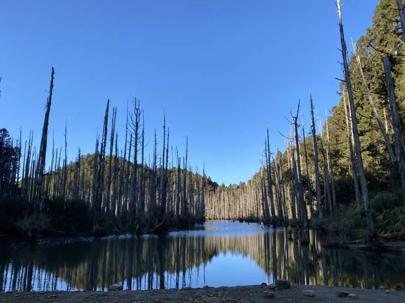人間仙境水漾森林一再發生山友迷途事件。(讀者提供)