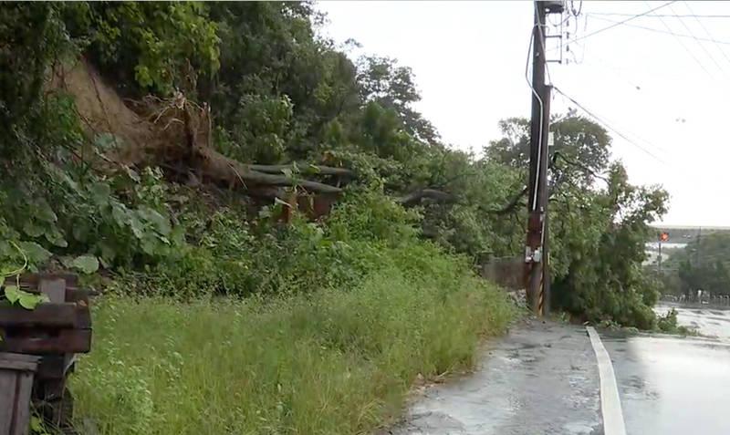 彰化雨勢不斷,員林明湖路旁山壁發生樹木崩塌意外,幸未造成傷亡。(記者陳冠備翻攝)