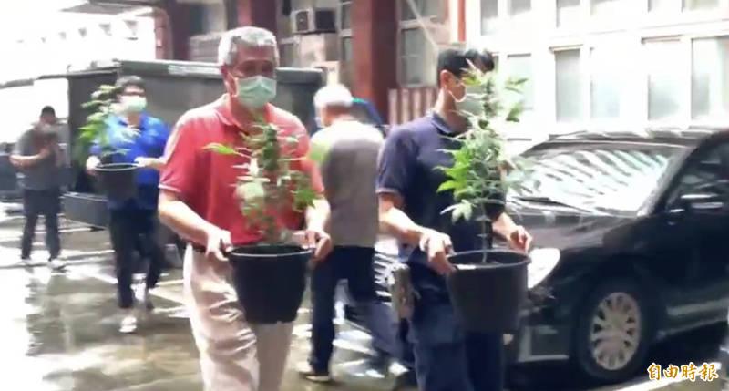 兄弟租屋種出大麻135活株、5000顆種子,高市刑大破獲台南大麻農場。(記者黃良傑攝)
