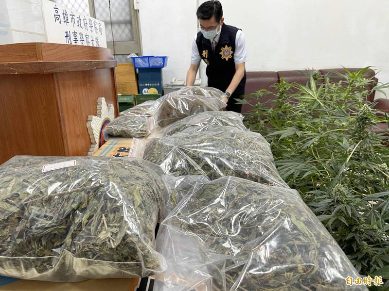 高市刑大破獲台南大麻農場。(記者黃良傑攝)