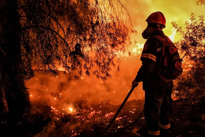 全球暖化持續惡化,導致野火、乾旱等天災不斷。(法新社)