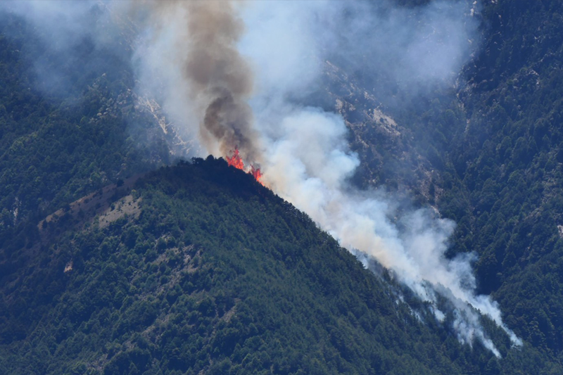 NCC前專委喬建中等5人引發玉山大火,林務局納入生態補償金額求償破2.2億元,為我國史上最高。(記者劉濱銓翻攝)