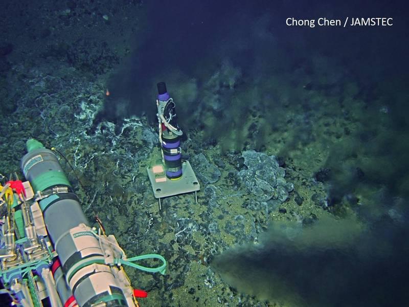 中研院生物多樣性中心助研究員林子皓與跨國團隊研究發現,深海海域較沿近海更容易受到聲景影響,呼籲深海採礦的環境評估應該也要納入聲景監測,以保護海洋的多樣性生態。(中研院提供)