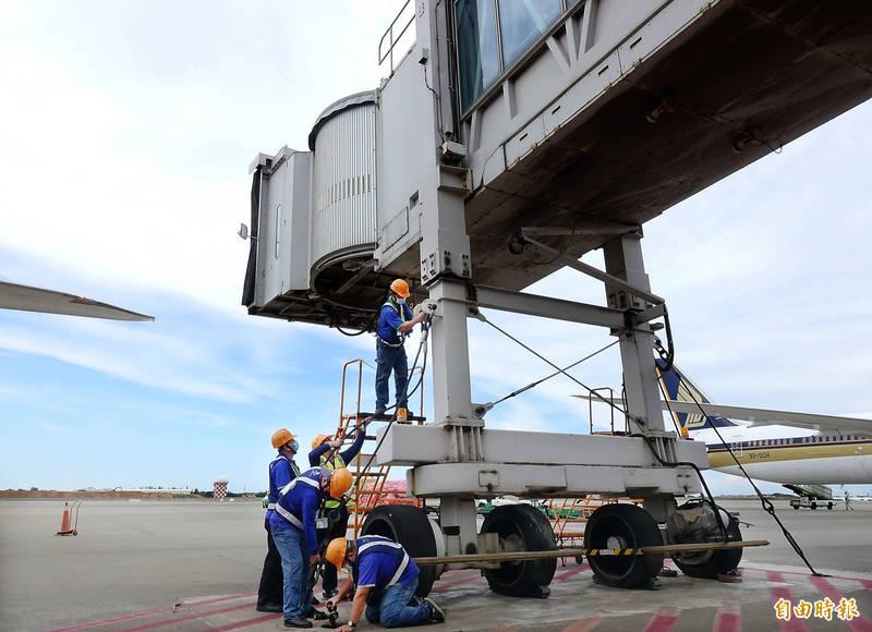 璨樹颱風暴風圈已接觸台灣本島,隨著颱風逐漸北上,對台灣的威脅也增加,機場公司11日下午提前完成A380客機專用空橋綁橋固定作業。 (記者朱沛雄攝)