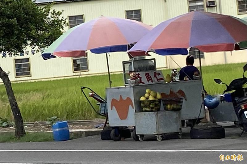 農民在菱角田或路邊擺攤賣起現採熟菱角。(記者楊金城攝)