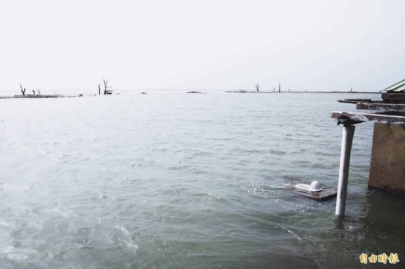 嘉義縣東石鄉白水湖壽島有一處露天馬桶,是當地特殊景觀。(記者林宜樟攝)