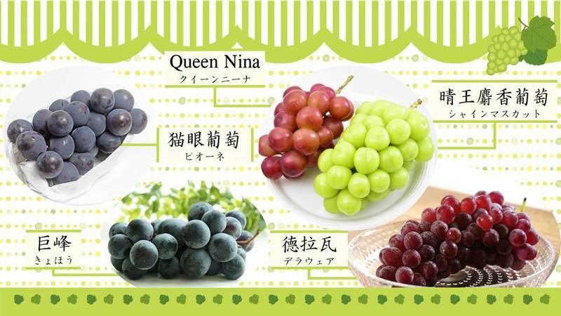 日本台灣交流協會特別發文介紹日本當地人氣超高的5個葡萄品種。(圖取自臉書_日本台灣交流協會)