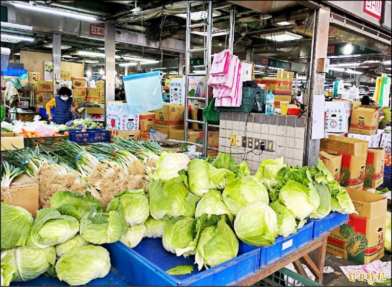 8月時高麗菜價格大漲,一顆售價超過200元。(記者楊心慧攝)