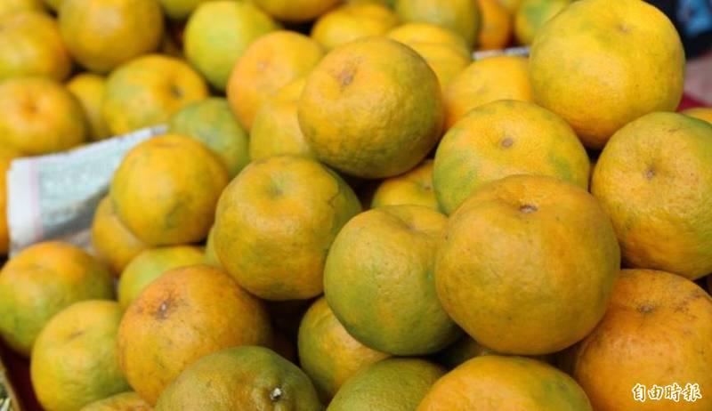 農委會主委陳吉仲今天表示,下一個可能受中國影響的出口品項可能是柑橘,但已預擬所有可能,萬一發生會有萬全準備。(資料照,記者蔡宗勳攝)