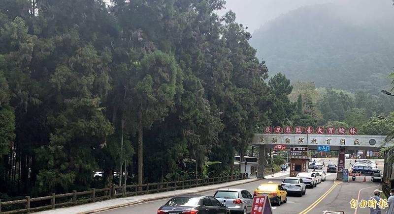 今中秋連假第3天,溪頭自然教育園區仍湧現排隊等候入園的車潮。(記者謝介裕攝)
