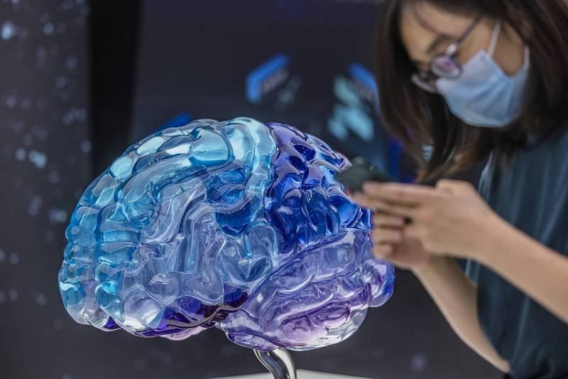 在人一生中,處於年輕發育階段的大腦展現出極大的可塑造性,而這項研究則表明,人們在經歷中風後的特定一小段時間裡,也會表現出類似「返老還童」的可塑性增強期,幫助傷後餘生的個體重新建立肢體的使用能力。(歐新社)