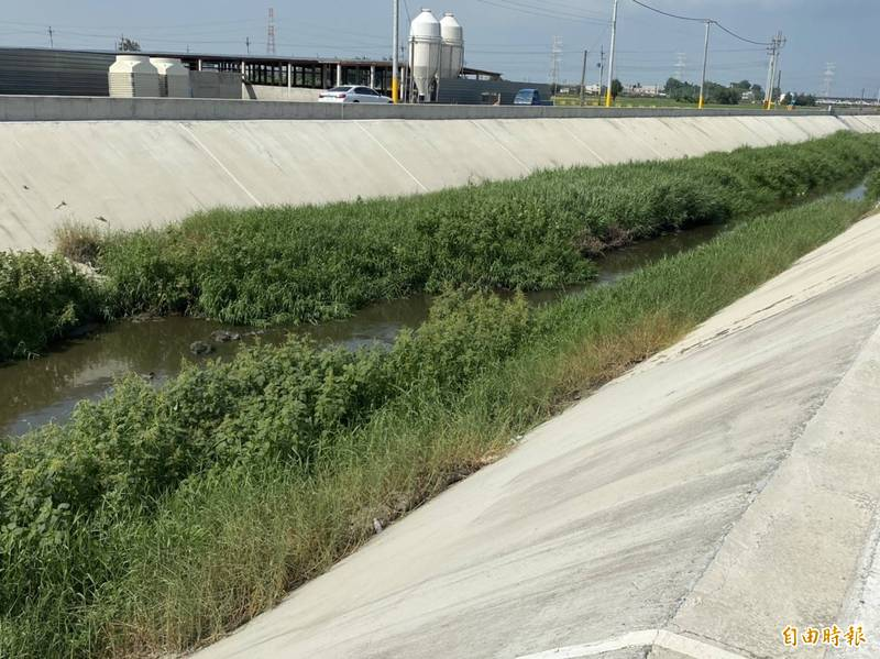 麥寮施厝寮大排已完成整治的河段。(記者詹士弘攝)