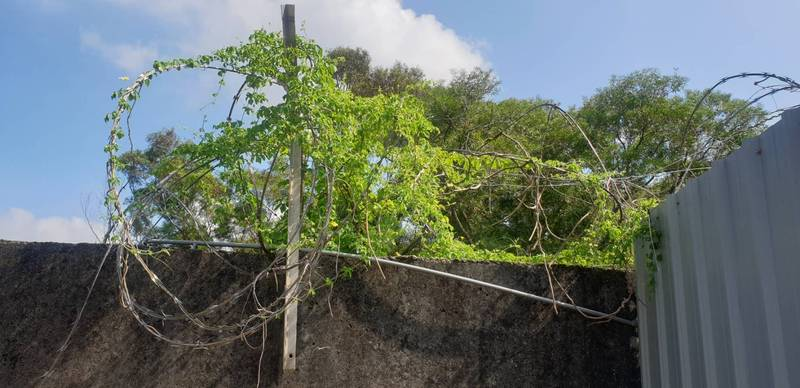 漢翔公司沙鹿廠區的圍牆上方鐵絲網遭破壞。(記者歐素美翻攝)