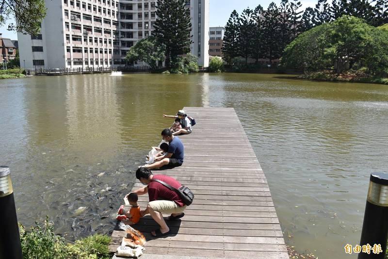 親子檔拿著麵包或飼料坐在中大湖木作碼頭上餵魚。(記者李容萍攝)