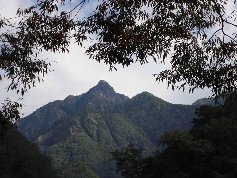 八仙山國家森林遊樂區將舉辦「八仙山森林豐盛季」。(東勢林管處提供)