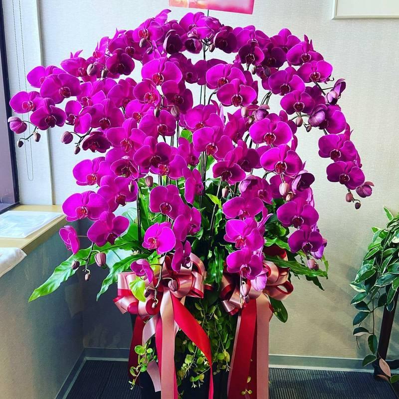 斯洛伐克加碼贈台16萬劑AZ疫苗,週日運抵。斯洛伐克辦事處近日收到許多感謝花籃,辦事處暖心表示,「就像這些美麗的花朵,希望斯洛伐克和台灣的友誼關係如花朵盛放!」 (取自斯洛伐克辦事處臉書)