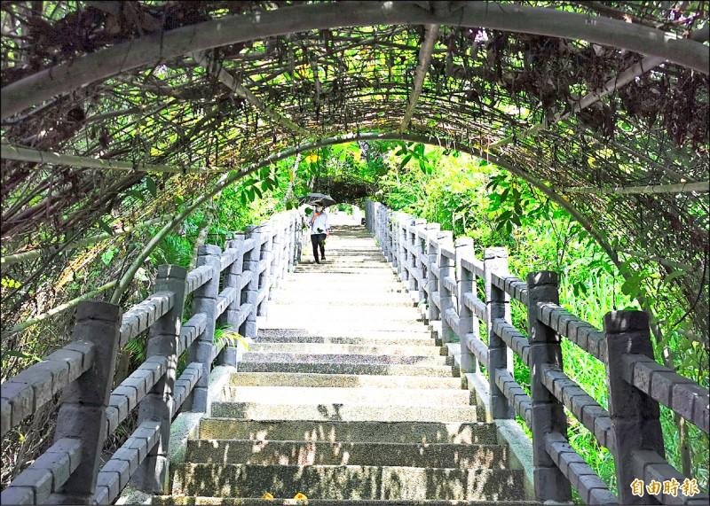 曾文水庫大壩旁的好漢坡,登頂可鳥瞰湖光山色,變成觀光熱點。(記者吳俊鋒攝)