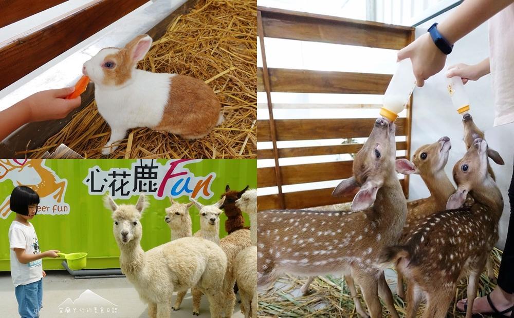 「草泥馬、梅花鹿寶寶」合體賣萌!宜蘭全新千坪親子農場6歲以下免費玩