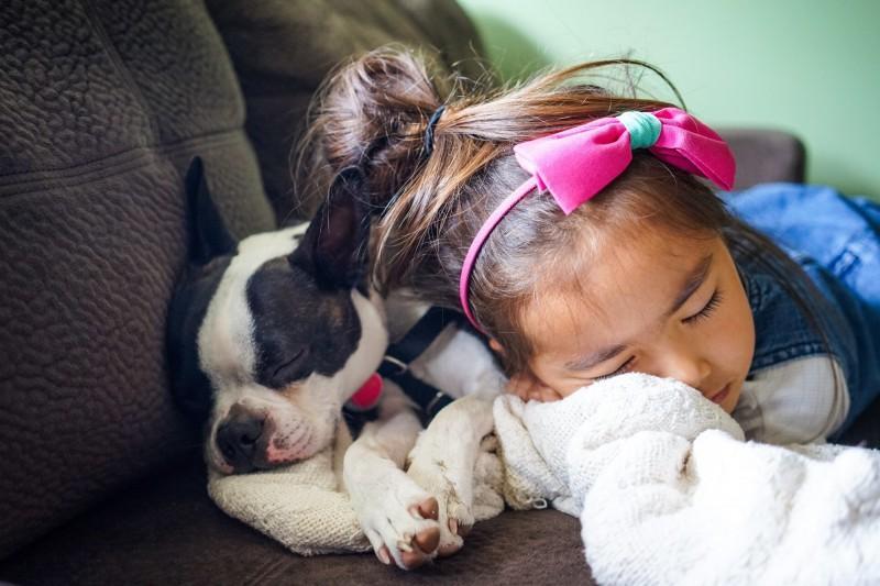 養寵物不只培養責任感!「陪毛孩散步玩耍」有助提升學齡前兒童社交能力