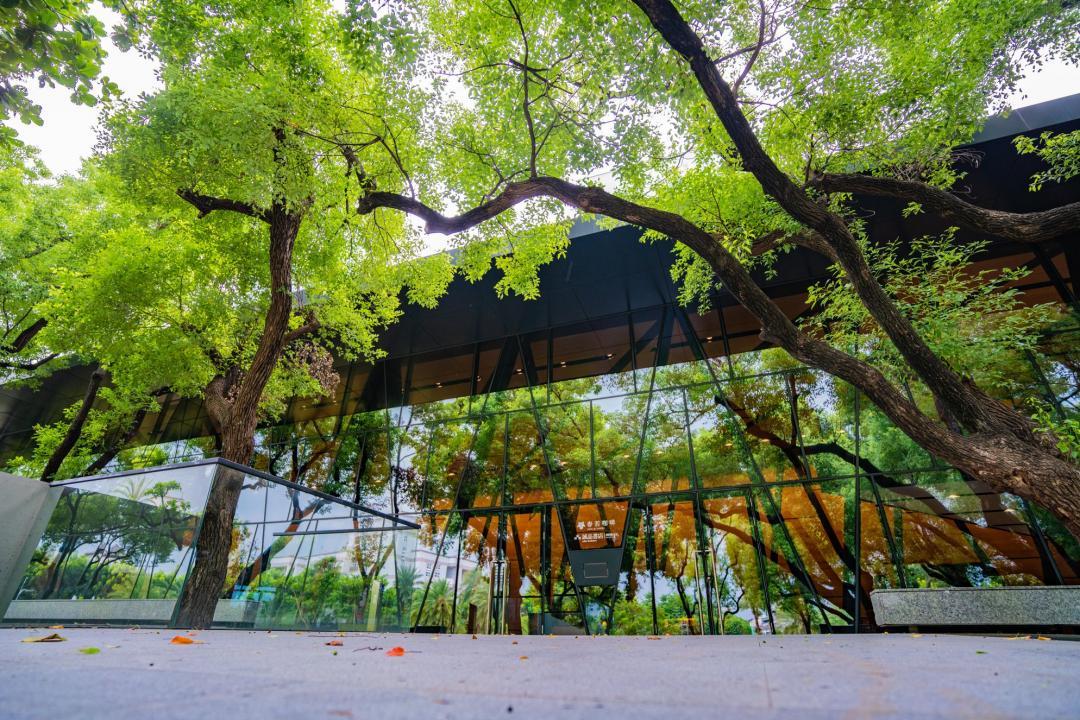 屏東「森林系玻璃屋」挑戰全台最美圖書館!大理石階梯座位成拍照亮點