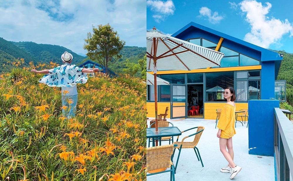 不輸花東金針花海!新竹「賞花新秘境」藍色童話小屋、山巒美景一起入鏡