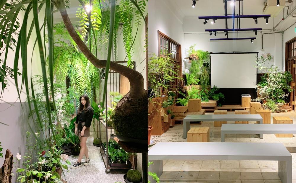 松菸古蹟澡堂變身「植物浴池、圖書館」!逛文青市集品嚐擬真花朵蛋糕
