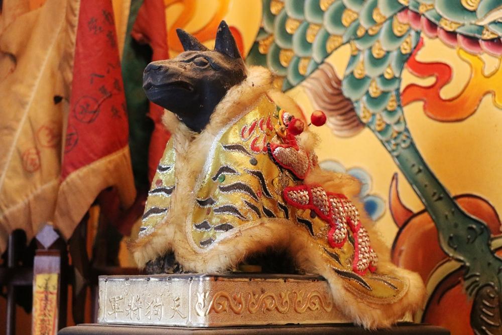 毛小孩也有守護神!台南佳里「應元宮」拜天狗將軍,還有寵物零食呷平安