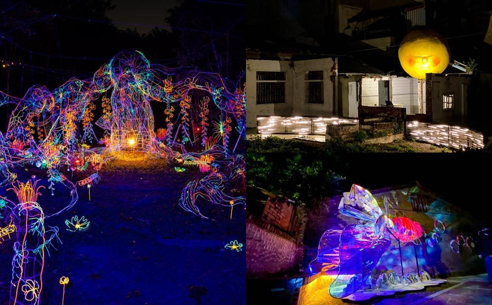 空山祭限時免費入場!「台南兩大最美燈節」流光樹、彩色金魚亮到農曆春節