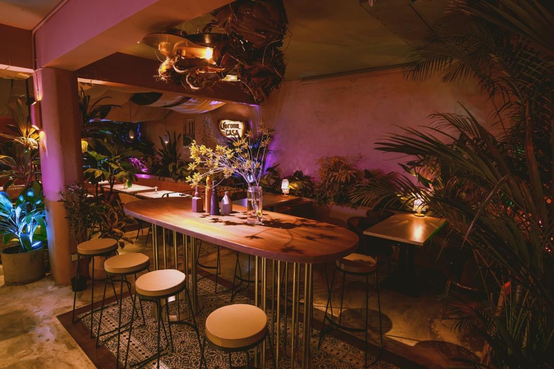 熱帶叢林搬進店內!台北東區全新餐酒館「Settle」大啖日式祕魯菜配美酒