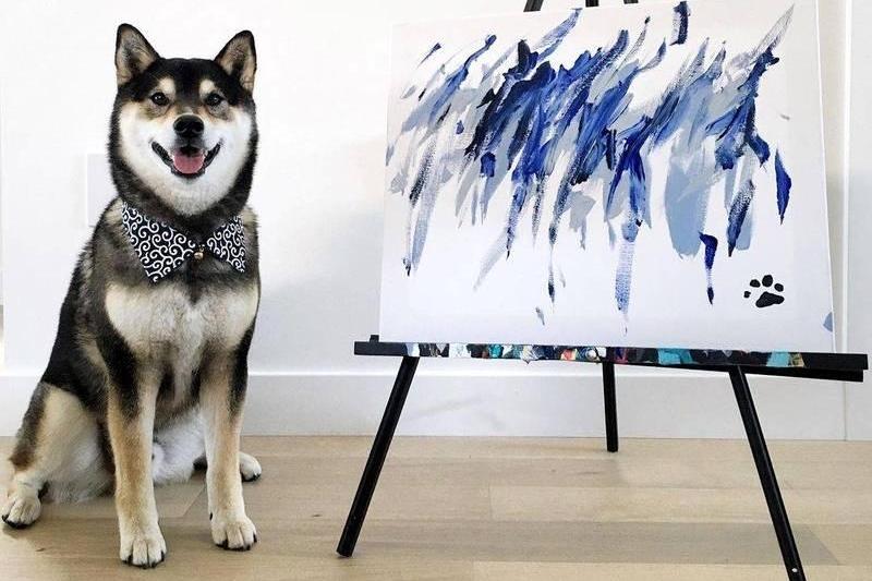 自己賺罐罐錢!柴犬發揮「超強畫工」咬筆創作超過300幅畫作
