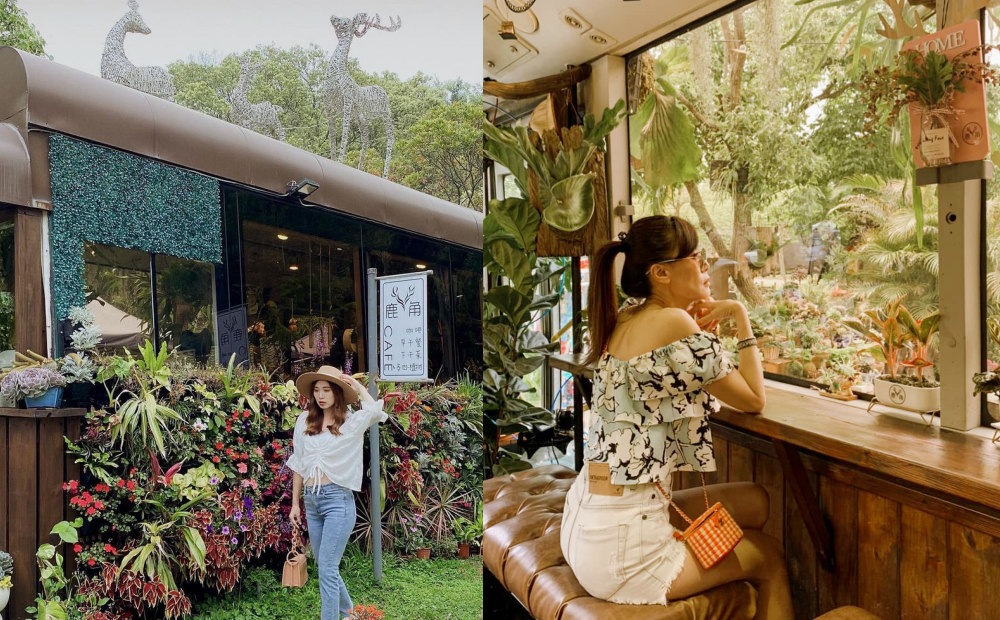 苗栗「多肉巴士」超療癒!公車變身植栽咖啡廳 綠意環繞彷彿宮崎駿場景