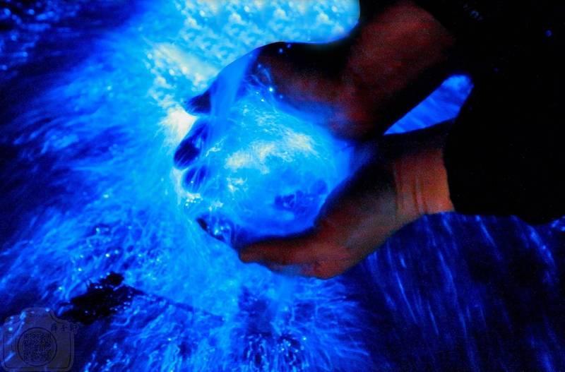 藍眼淚大爆發!攝影達人分享「魔幻海上極光」追淚&拍照攻略