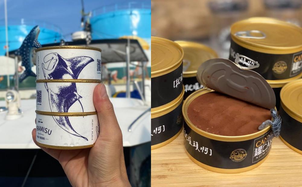 澎湖超Q「罐頭提拉米蘇」組成魟魚造型!海洋風宅配甜點一開即食