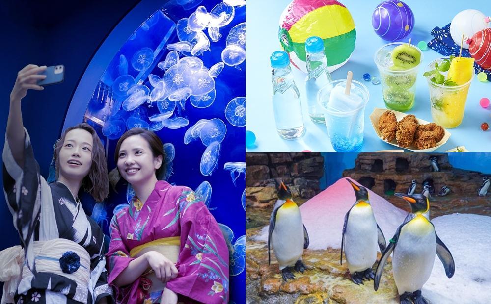 穿浴衣逛水族館、看企鵝吃冰!Xpark一週年新玩法秒飛日本祭典