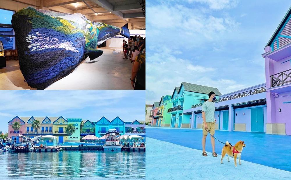 花蓮南歐小鎮「向日廣場」重新回歸!10公尺大鯨魚、漁港市集成必玩亮點