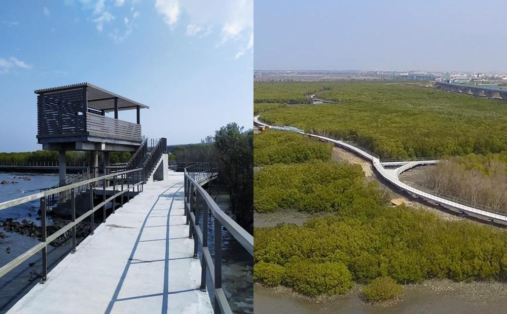 彰化第一條「濕地海空步道」今啟用!賞夕陽紅樹林、看全台唯一海牛